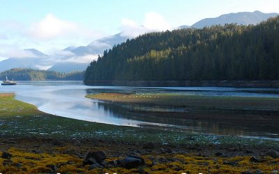 Lincoln County passes bill of rights for the Siletz Watershed